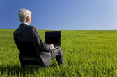 Blue Sky Thinking Businessman Using Laptop Computer in Green Fie — Stock Photo