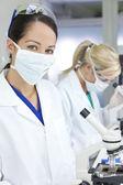 Female Scientific Research Team Using Microscopes in a Laborator — Stock Photo