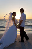 Bride & Groom Married Couple Sunset Beach Wedding — Stock Photo