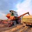 Combine harvesting — Stock Photo #6412679