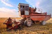 Combine harvesting — Stockfoto