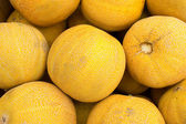 Ripe melons — Stock Photo