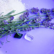 Stock Photo: Lavender and two mineral stones