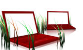 Red designer laptops and grass — Stock Photo
