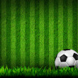 Soccer football on grass field — Stockfoto