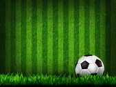 Soccer football on grass field — Foto de Stock