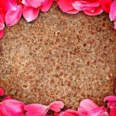 Frame of flower petal — Stock Photo