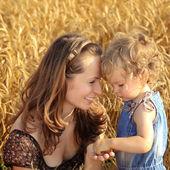 Kobieta z dzieckiem w polu pszenicy — Zdjęcie stockowe