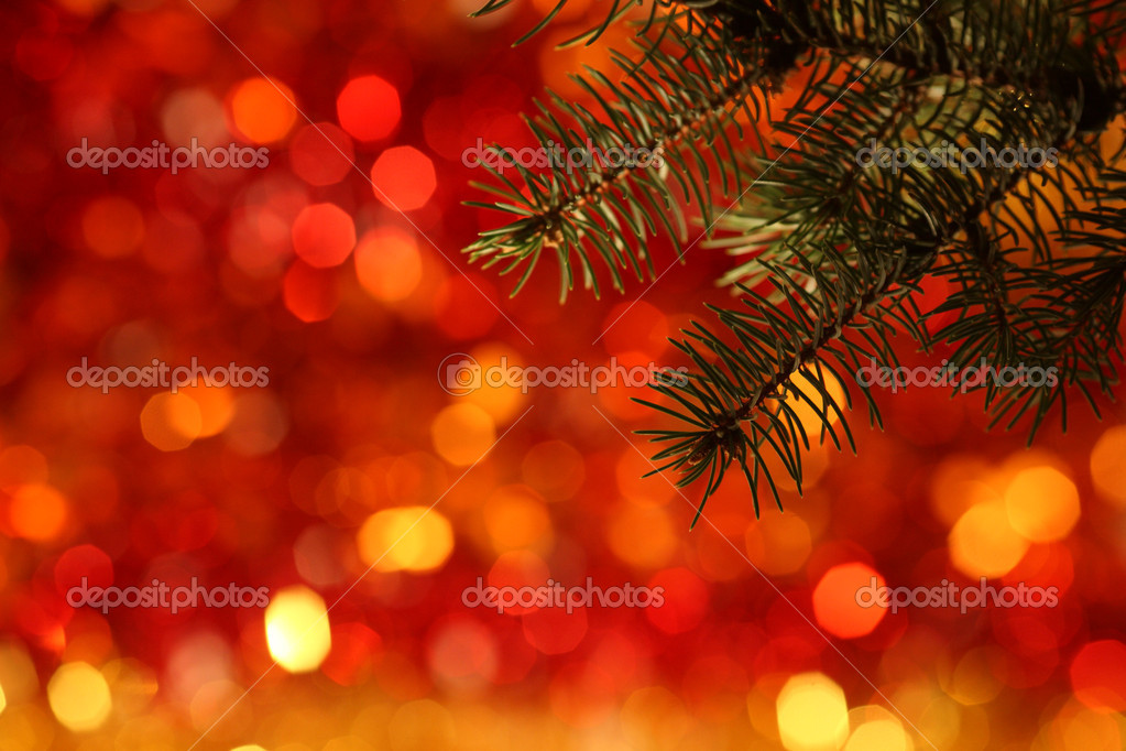 Branch of Christmas tree against red light background — Stock Photo #6270493
