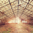 Old abandoned hothouse — Stock Photo