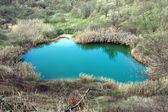 Small lake — Fotografia Stock