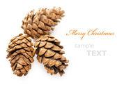 孤立与副本 spa 在白色背景上的三个圣诞锥体 — 图库照片