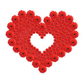 Heart from red gerbera flowers isolated on white background. Val — Stock Photo