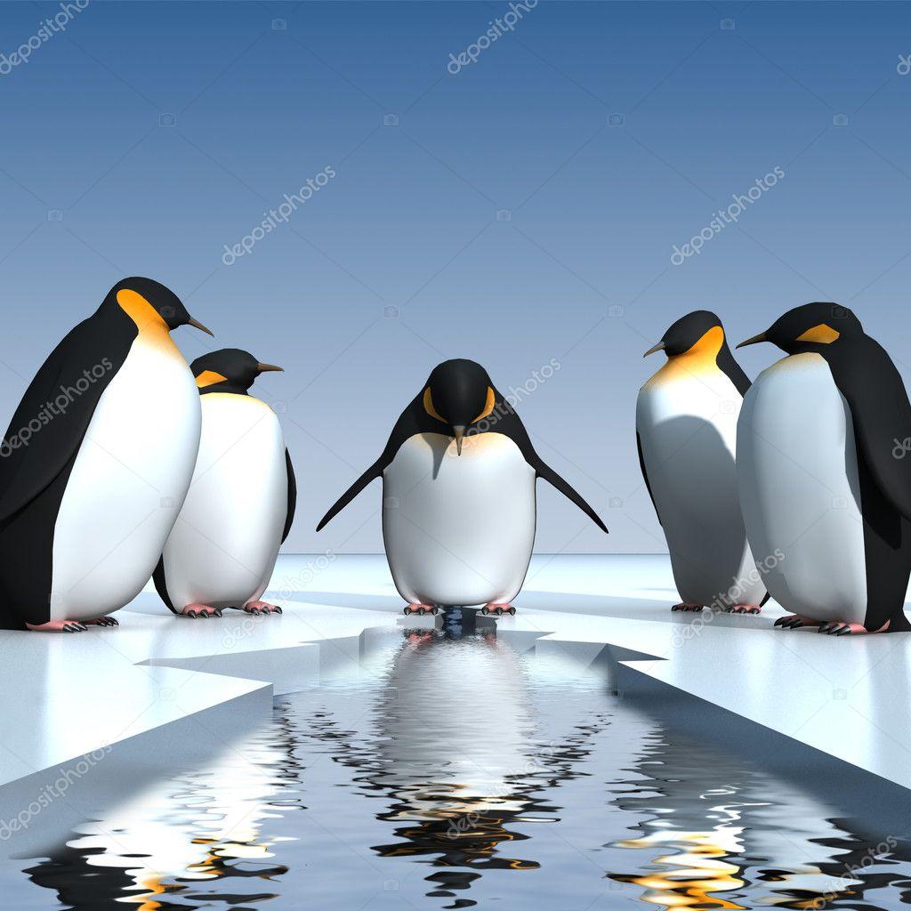 有趣的企鹅 图库图片图片