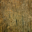 Stock Photo: Wood texture with natural patterns
