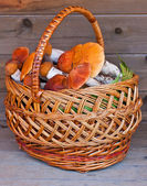 Basket full of mushrooms on a wooden background — Foto Stock