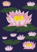 Lotuses — Stock Vector