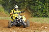 Quad race — Stock Photo