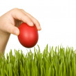 Child hand with red easter egg — Stock Photo