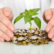 Stock Photo: Protecting good investment and making money concept