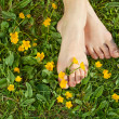 Stock Photo: Womresting her feet in fresh spring vegetation