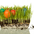 Easter symbols — Stock Photo #6408801