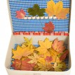 Vintage suitcase with autumn leaves — Stock Photo