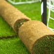 Turf grass rolls on football field - Stock Photo