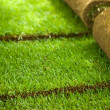 Turf grass rolls partially unrolled - Stock Photo