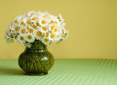 Big daisy bouquet in a vase — Stock Photo