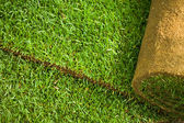 Turf grass roll background — Stock Photo
