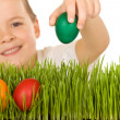 Happy boy with easter eggs in the grass — Stock Photo