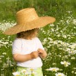 Little girl on the daisy field — Stok fotoğraf