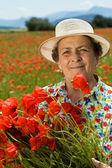 üst düzey kadın çiçek haşhaş sahada toplama — Stok fotoğraf