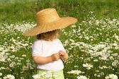 Little girl on the daisy field — Stock Photo