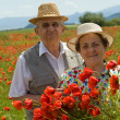 Stock Photo: Senior couple on poppy field enjoying summer