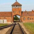 Main entrance to Auschwitz — Stock Photo