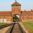 Main entrance to Auschwitz — 图库照片