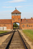 Main entrance to Auschwitz — Foto Stock