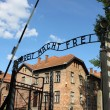 Entrance gate to Auschwitz concentration camp — Stock Photo #6370828