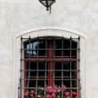 Medieval window with flowers — Stock Photo