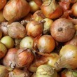 Stock Photo: Fresh onions