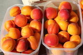 Bowls of apricots — Stock Photo