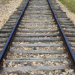 Railway line — Stock Photo #6664938