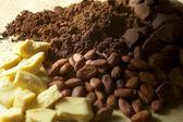 Chocolate Raw Material — Stock Photo