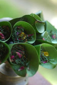 Bunga Rampai — Stock Photo