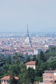 Turin Landscape — Stock Photo