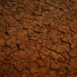 Stock Photo: Brown stone background