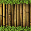 Bamboo background with plant border - Stock Photo
