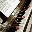 Piano and petals — Stock Photo